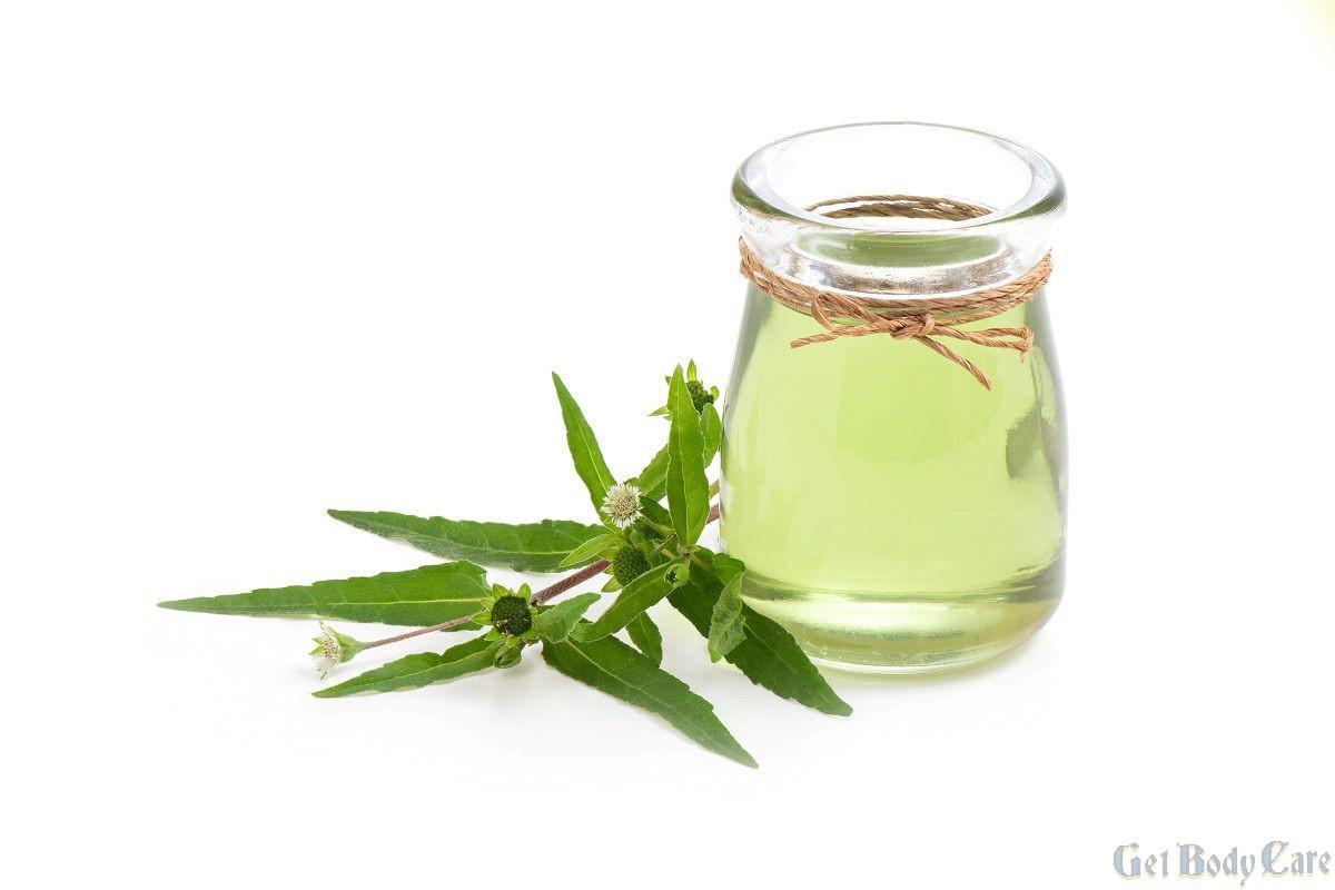 False daisy , bhringraj oil for hair growth