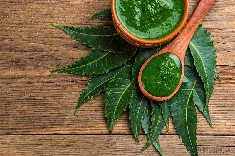 medicinal-neem-leaves-with-paste-wooden-surface.jpg